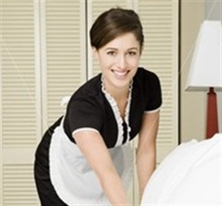 Existing Recession Resistant Residential House Cleaning Business